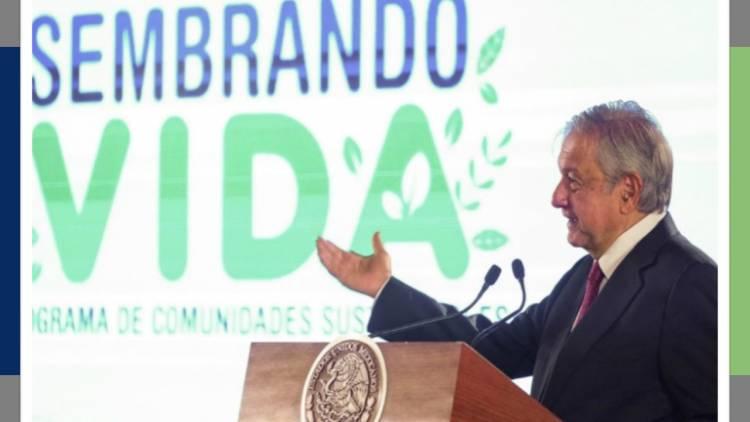 López Obrador presenta Sembrando Vida para reactivar el campo mexicano