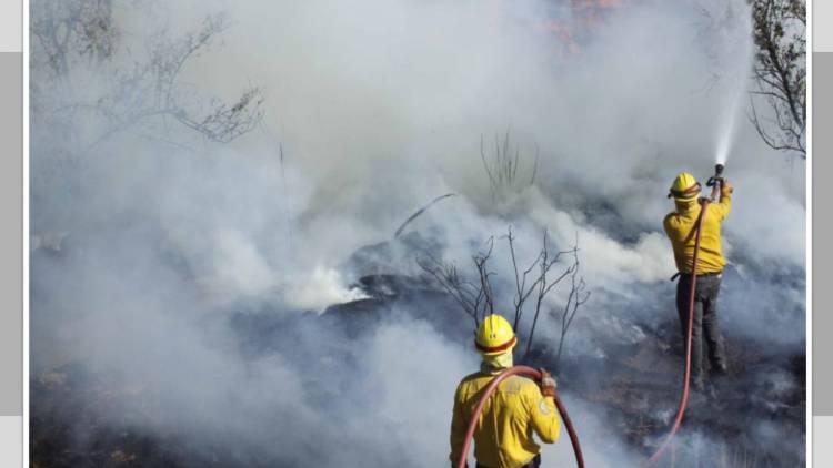 Declaran emergencia para 27 municipios de Guerrero por incendio