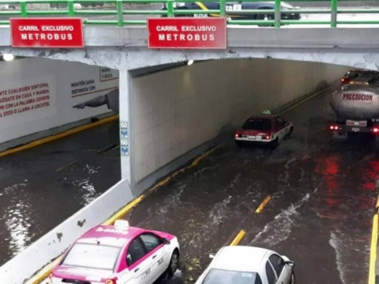 Lluvia deja 13 encharcamientos y caída de árboles