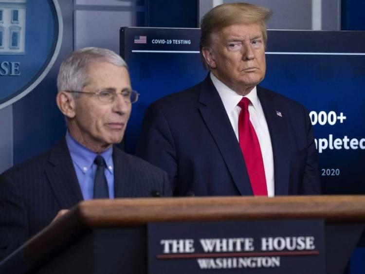 Trump llama 'idiotas' a sus expertos contra covid-19